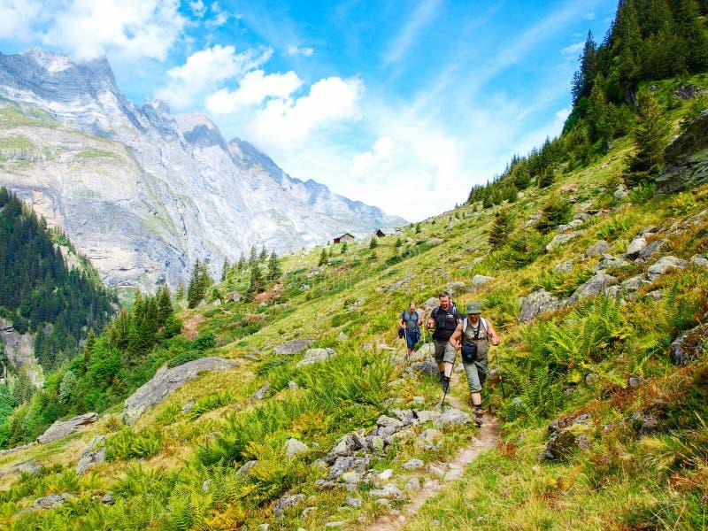 迁徙在阿尔卑斯,瑞士的年轻远足者,有山的在背景中 免版税库存图片