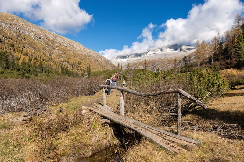 迁徙在阿达梅洛山布伦塔河意大利国立公园  库存图片
