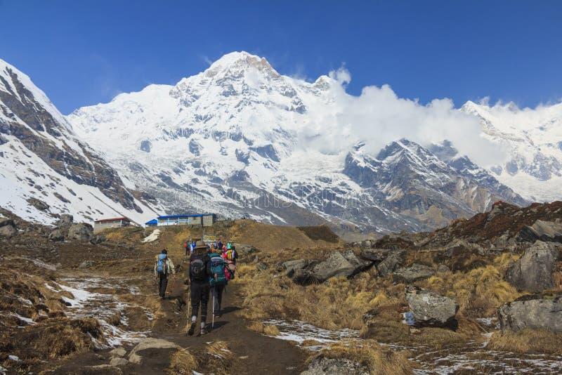 迁徙对喜马拉雅山安纳布尔纳峰营地,尼泊尔的游人 免版税库存照片
