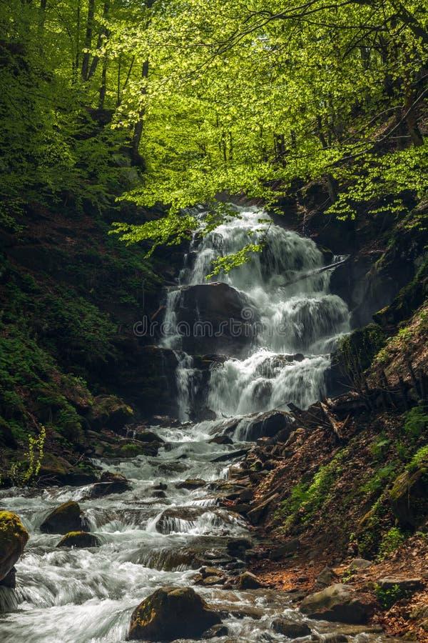 迅速瀑布在喀尔巴阡山脉 免版税库存图片