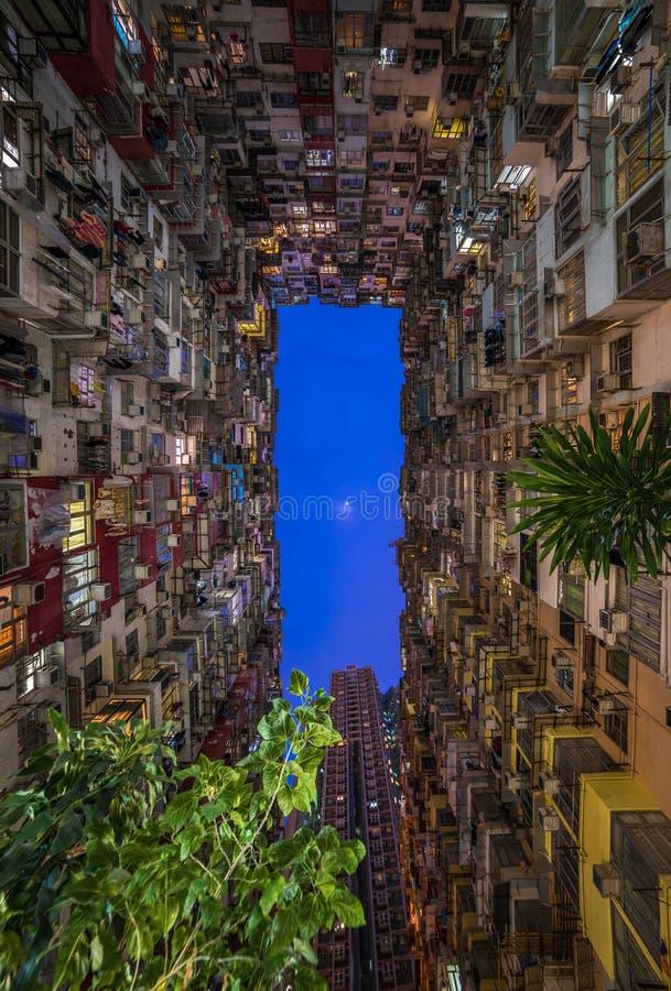 过度拥挤的居民住房在香港 免版税图库摄影