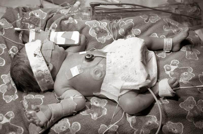 Download 过早的婴孩 库存图片. 图片 包括有 看护, 生活, 透气, 诞生, 护士, 款待, 新生, 健康, 婴儿, 医院 - 188683