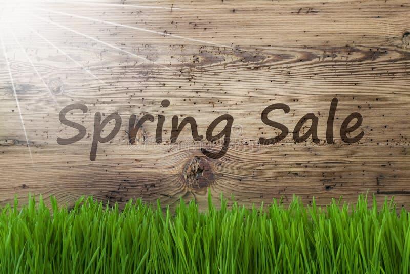 年迈的木背景, Gras,文本春天销售 向量例证