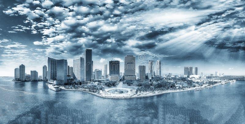 迈阿密单色看法从天空的 城市地平线,佛罗里达 免版税库存照片