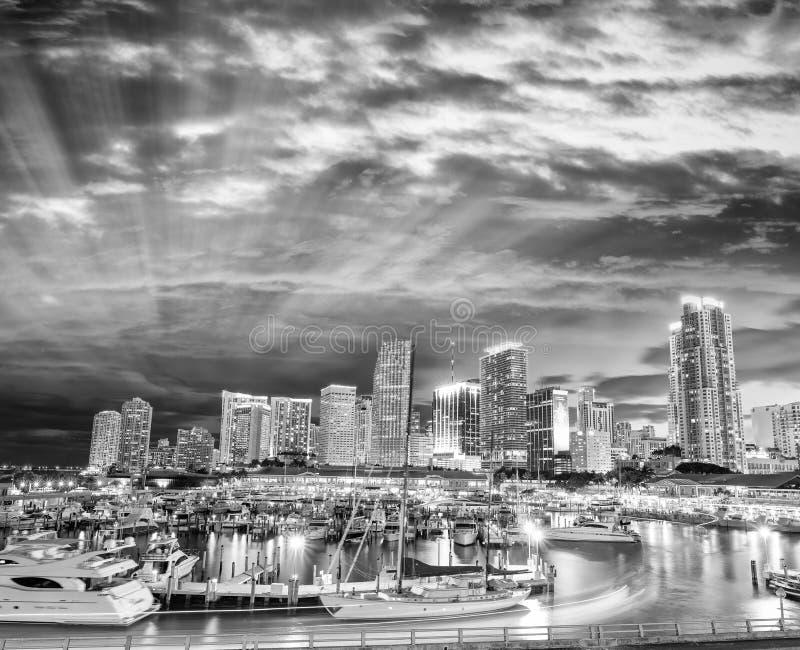 迈阿密夜地平线,佛罗里达黑白看法  库存照片