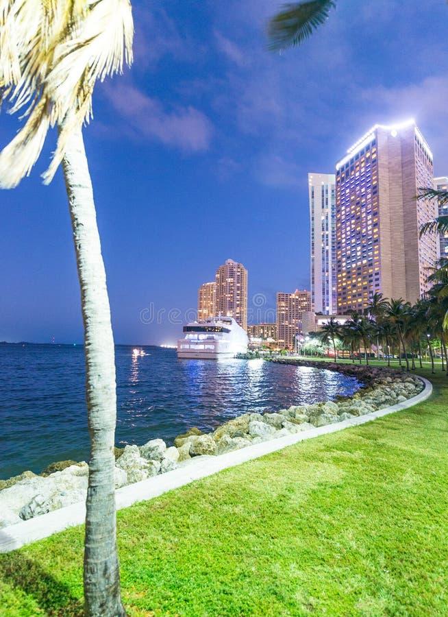 迈阿密大厦在与棕榈的晚上,佛罗里达-美国 免版税库存照片