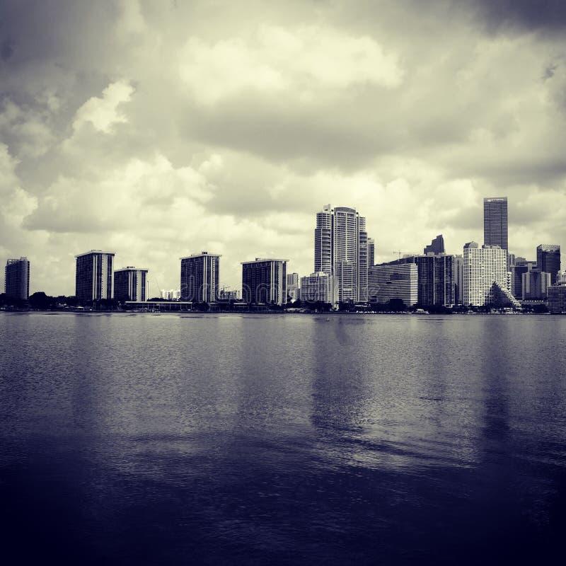 迈阿密性感的地平线  库存照片
