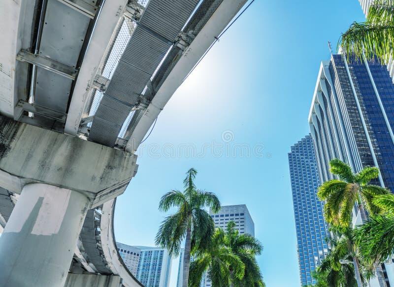 迈阿密摩天大楼和树反对蓝天 免版税图库摄影
