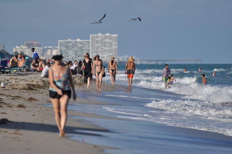 迈阿密海滩偶然风景 免版税库存照片