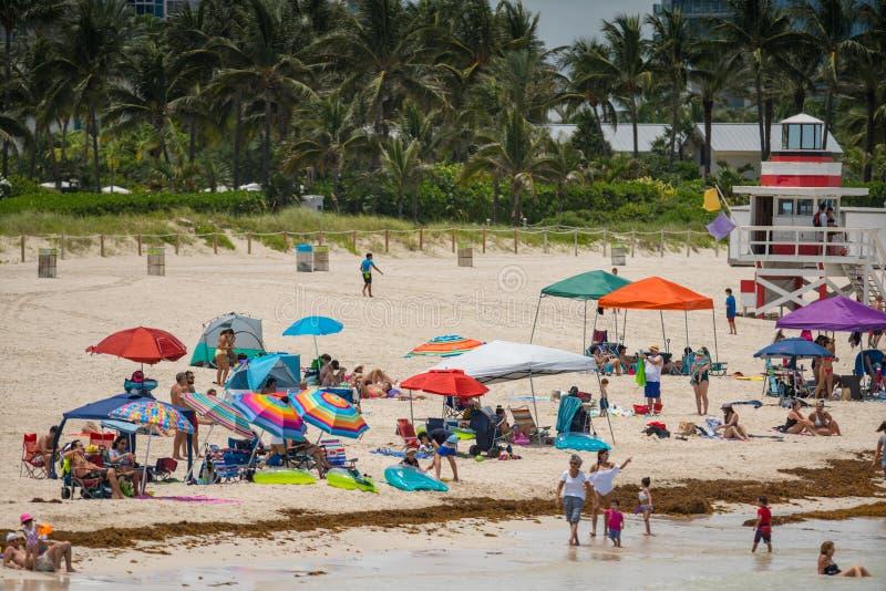 迈阿密海滩的游人 准备好一天在海滩 库存照片