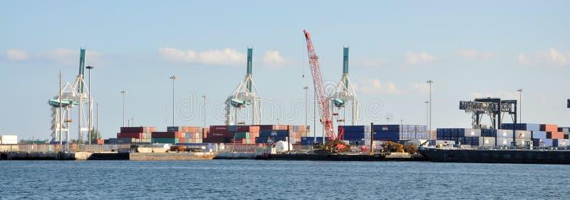 迈阿密港  库存照片