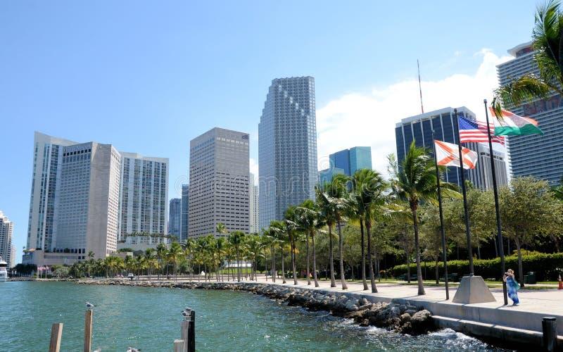迈阿密湾畔天际线 免版税图库摄影