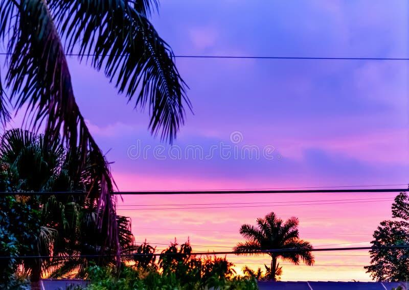 迈阿密的紫色和粉色黎明 库存照片