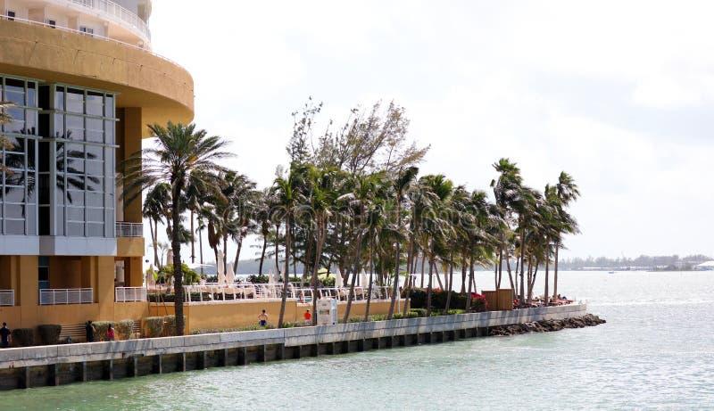 迈阿密街市地平线Brickell大厦在迈阿密河江边 库存照片