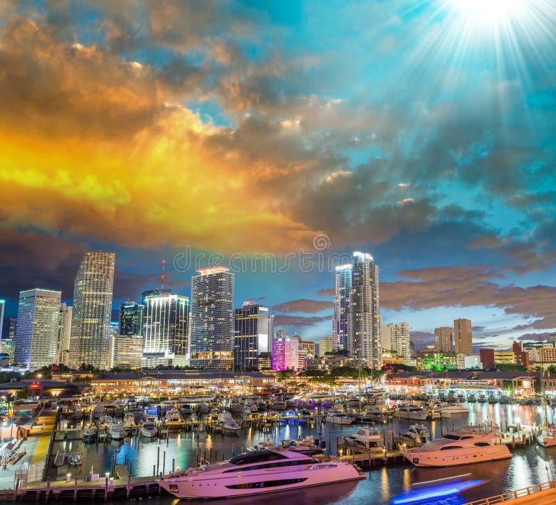 迈阿密,佛罗里达惊人的地平线  免版税库存图片