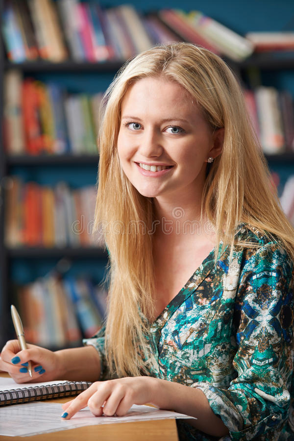 运作在图书馆里的女学生画象 库存图片