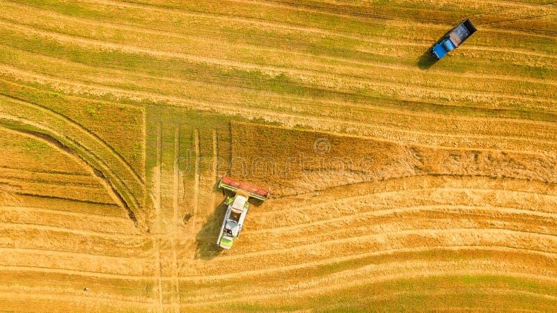 运作在领域的收割机和割麦子 乌克兰 鸟瞰图 免版税库存图片