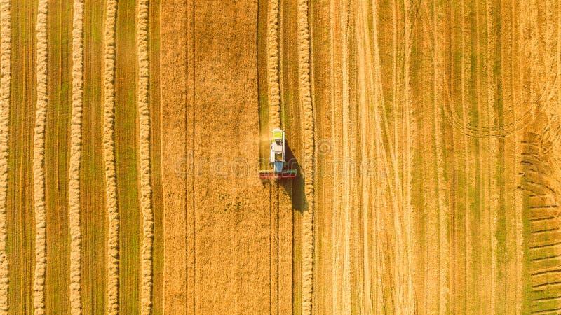 运作在领域的收割机和割麦子 乌克兰 鸟瞰图 免版税图库摄影