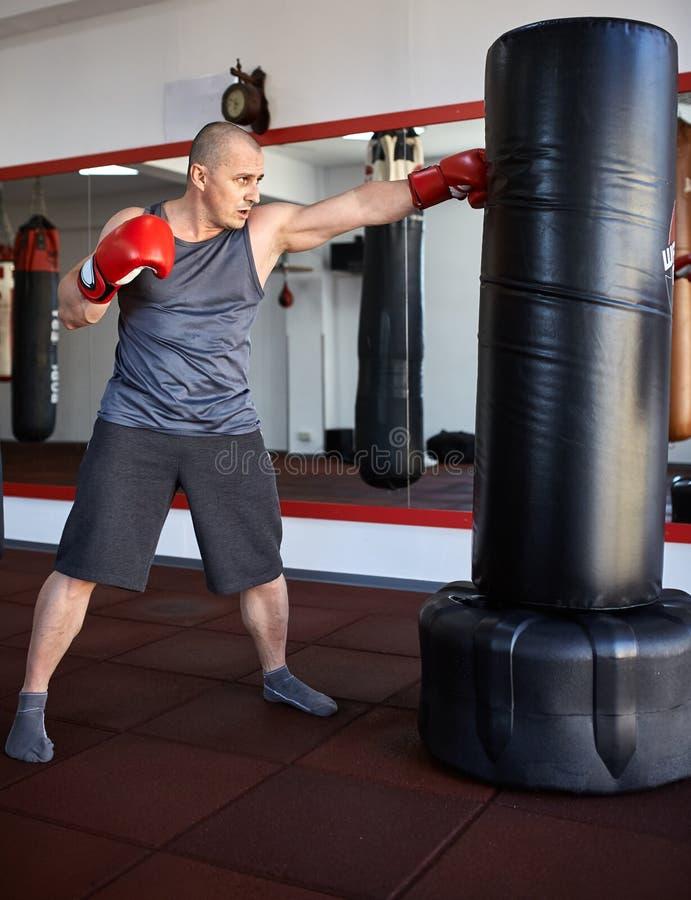 运作在punchbags的Kickbox战斗机 免版税库存照片