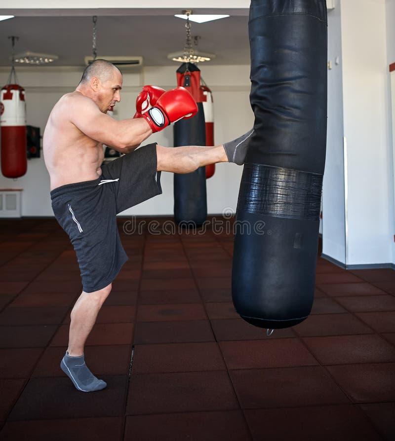运作在punchbags的Kickbox战斗机 免版税库存图片