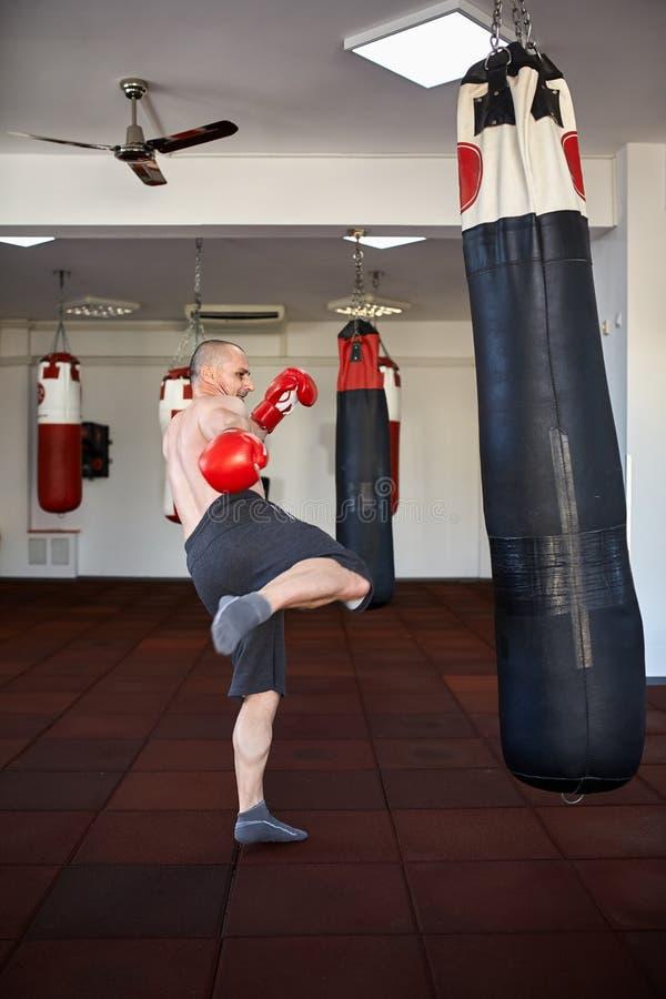 运作在punchbags的Kickbox战斗机 图库摄影