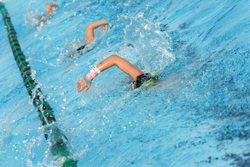 运作游泳队 免版税库存图片