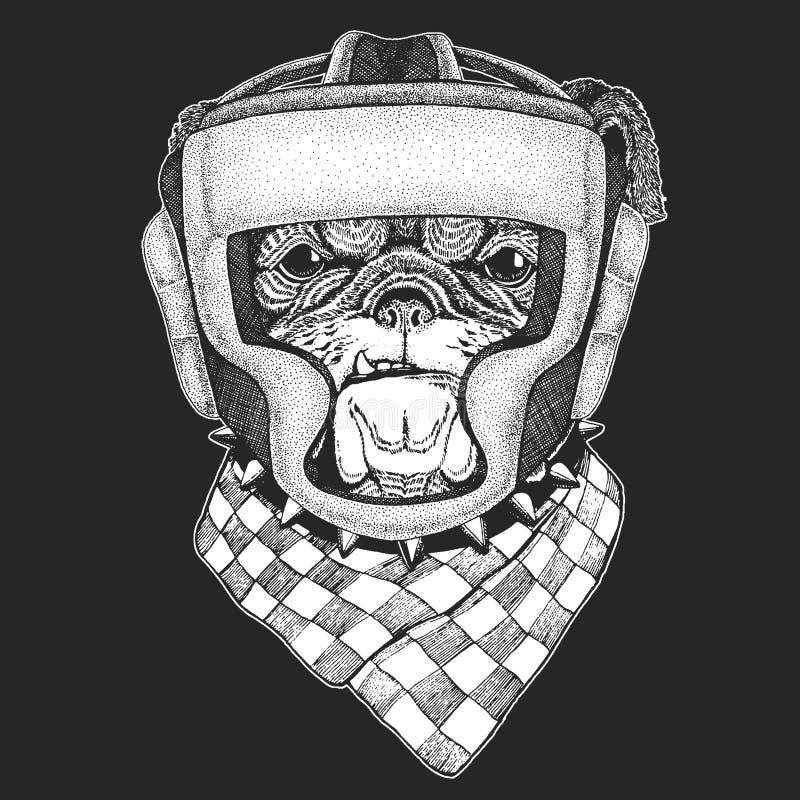 运动动物牛头犬,狗 拳击冠军 T恤杉的,象征,商标印刷品 军事的艺术 传染媒介例证与 库存例证