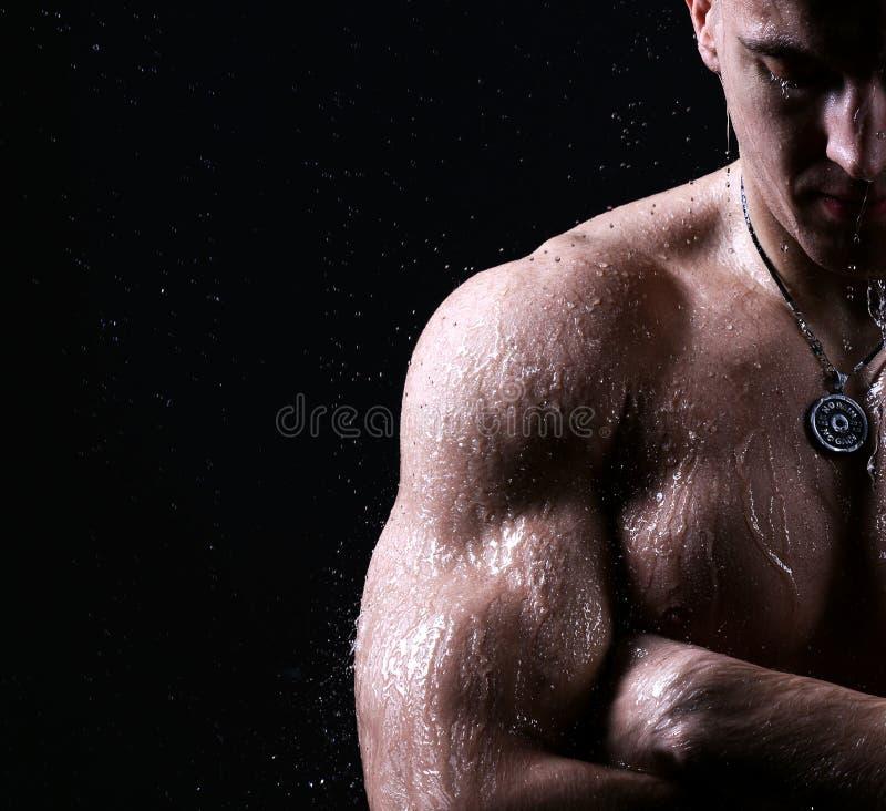 运动员肌肉残酷爱好健美者强的男性赤裸躯干posi 免版税库存照片