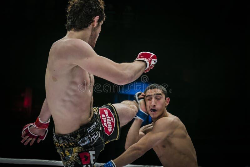 运动员被混合的武术战斗机碰撞他的在他的对手头的脚  库存图片