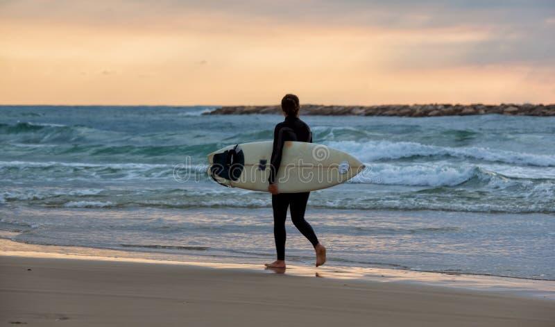 运动的女孩去冲浪 免版税库存图片