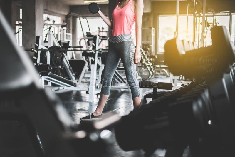 运动的妇女锻炼的播种的图象与哑铃的,女性在运动服做锻炼在健身房 免版税库存图片