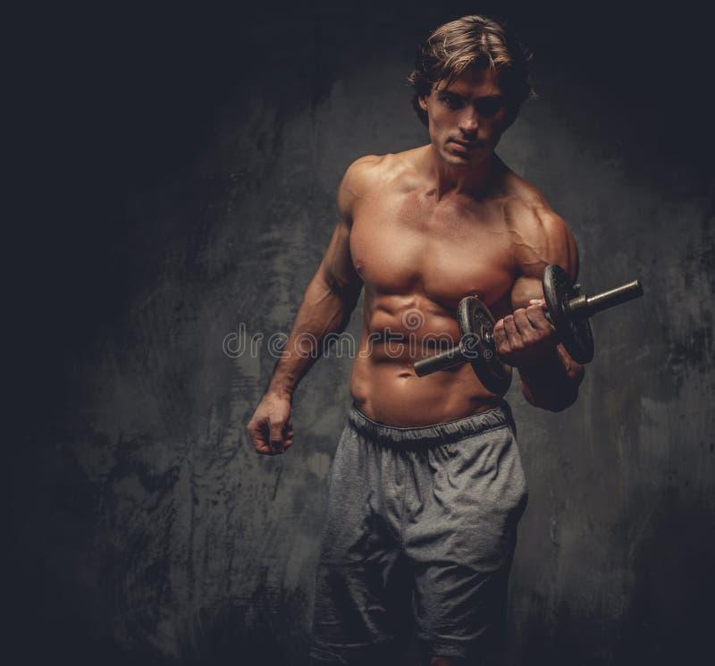 运动的赤裸上身的男性画象与哑铃的 图库摄影