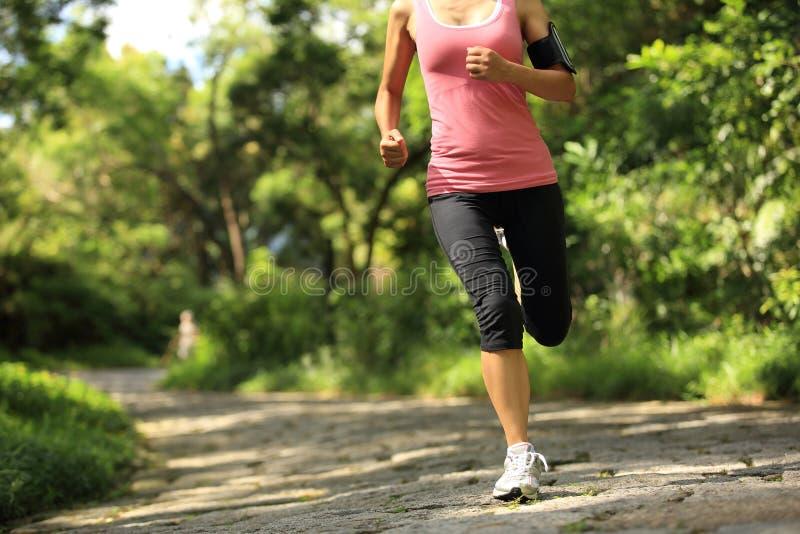运行在森林足迹的妇女赛跑者 库存照片