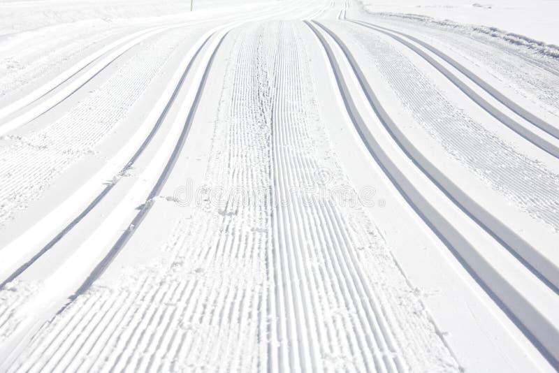 运行滑雪 库存照片