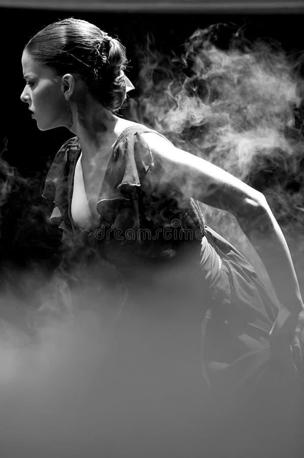 运货马车的车夫舞蹈戏曲佛拉明柯舞&# 免版税库存照片