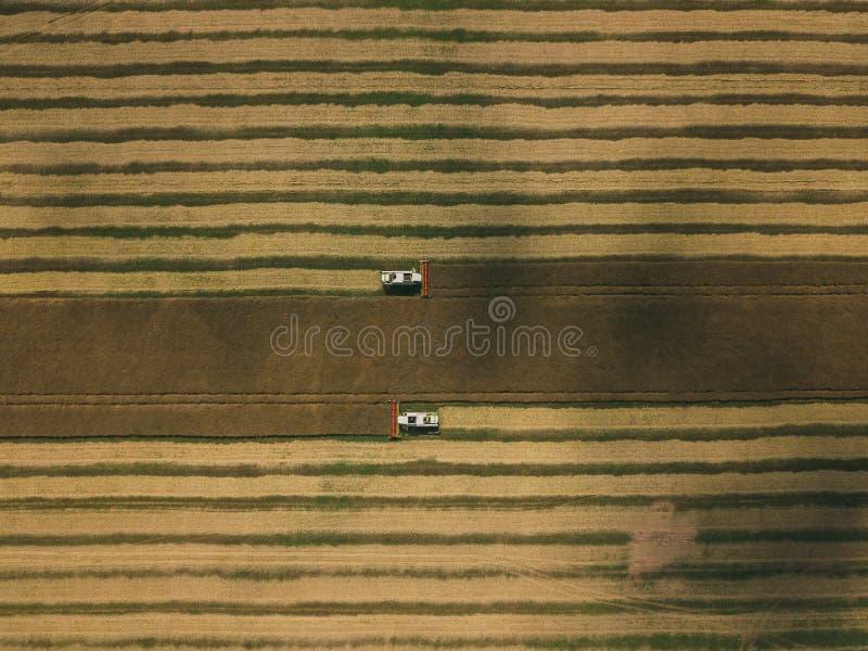 运转在领域的收割机机器 联合收割机农业机器收割金黄成熟麦田 库存照片