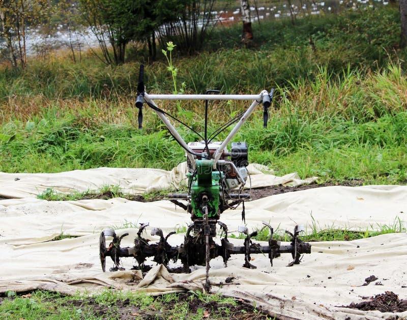 运转的马达耕地机翻土机在Gatchina公园在地面等待的工作 库存图片