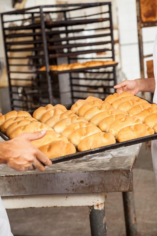 运载在烘烤盘子的贝克的手面包 免版税库存图片