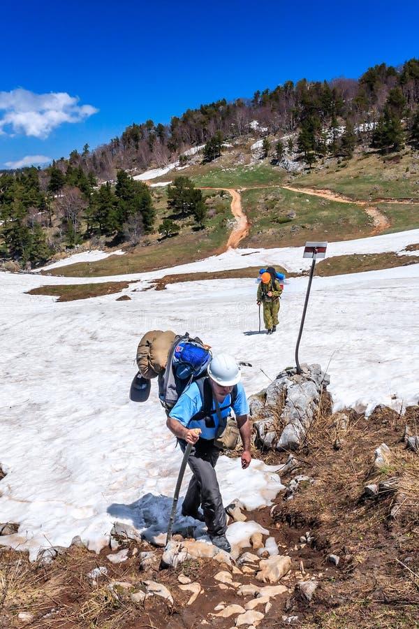 运载背包的人远足者在沿旅游小径的路线走在白种人山春天 图库摄影