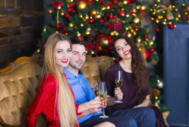 临近壁炉庆祝圣诞节的年轻朋友 库存图片