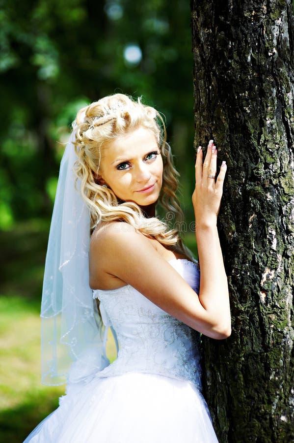 近美丽的新娘礼服突出结构树婚礼 免版税库存图片