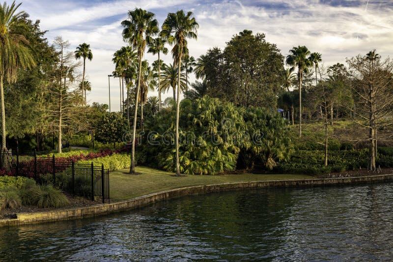这是与棕榈树的一个热带水风景视图 免版税库存照片