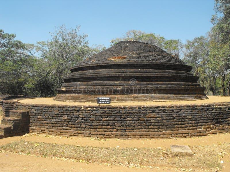 这是图象美丽的国王PALACE OF斯里兰卡 库存照片