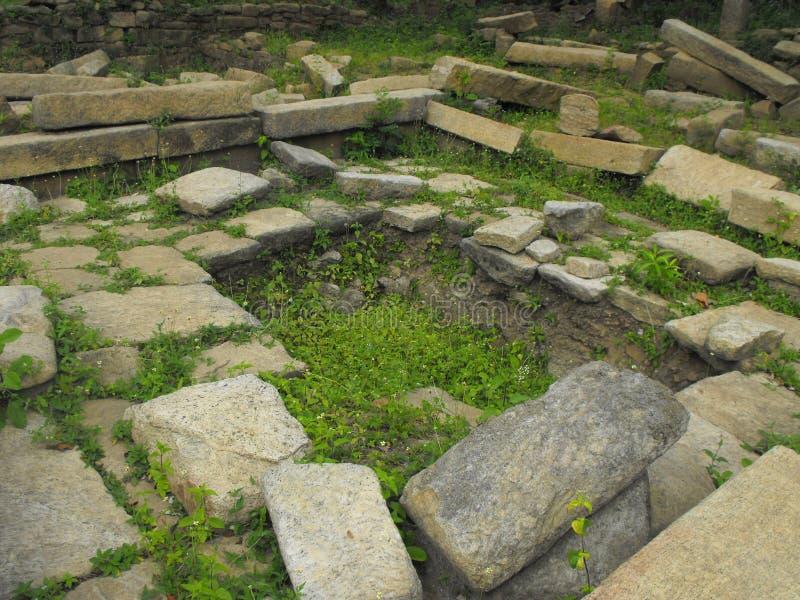 这是安帕拉图象斯里兰卡美好的地方  库存图片
