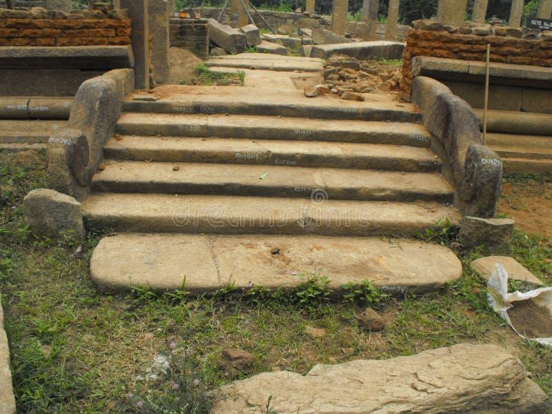 这是安帕拉图象斯里兰卡美好的地方  免版税图库摄影