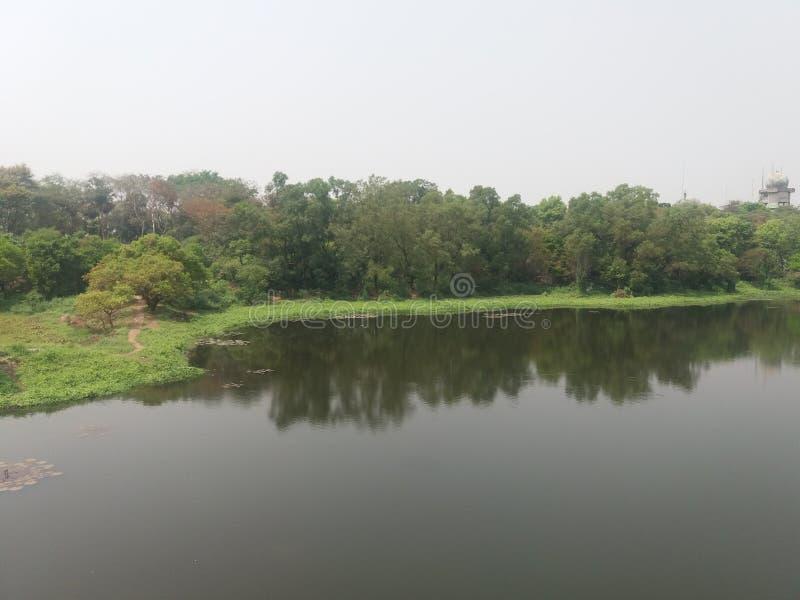 这是植物园iin的达卡,孟加拉国一个湖 库存照片