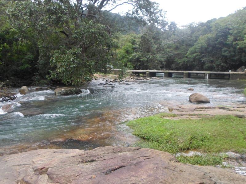 这是美丽的河斯里兰卡 图库摄影