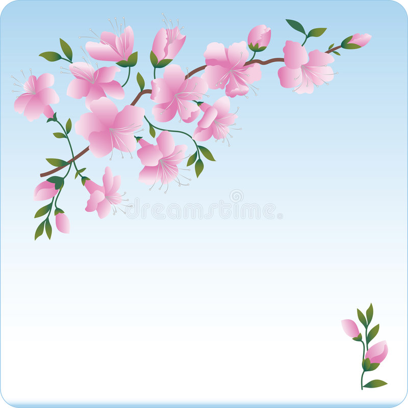进展的分行开花粉红色 向量例证