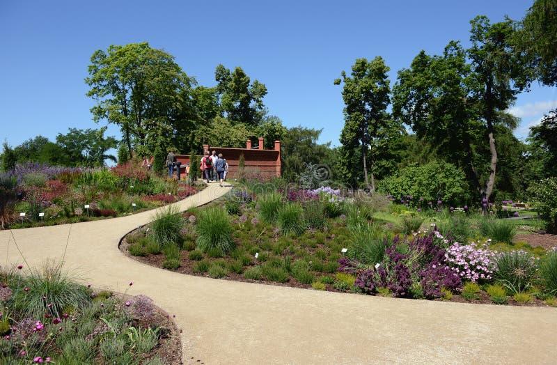 进来通过marienberg山公园花圃的人们图片