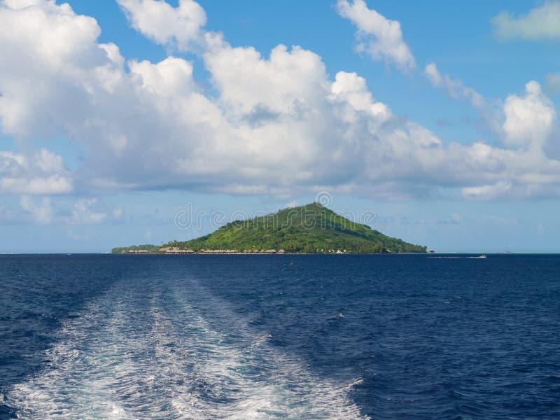 远离在树盖的海岛的航行 免版税图库摄影